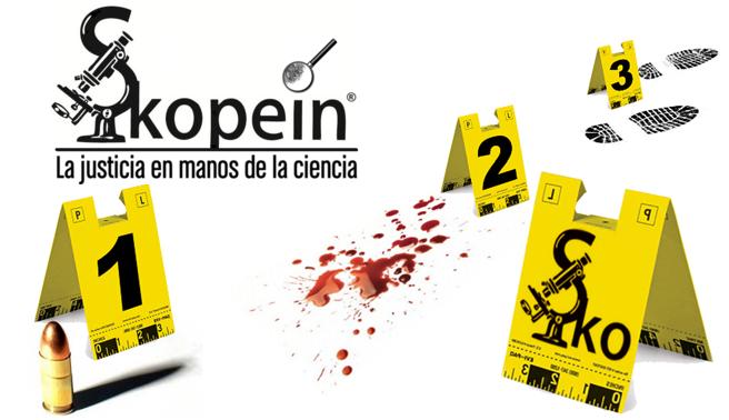 Revista Skopein